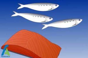 3 روش های طبیعی کاهش پلاکت خون