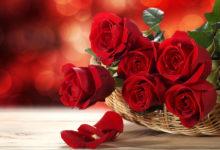 Photo of راهنمای انتخاب گل مناسب با روحیه هر فرد در روز ولنتاین Valentine