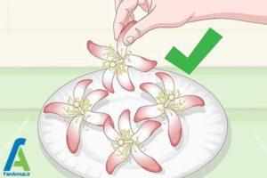 6 رنگ کردن گل ابریشمی
