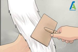 4 شستن و مراقبت از خز