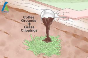 6 تقویت خاک یا کمپوست