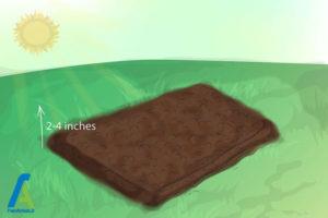 6 پرورش گل گلایول