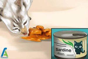 3 نحوه تامین اسید چرب مورد نیاز گربه