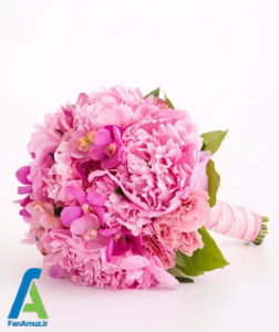 7 گلهای مناسب دسته گل صورتی
