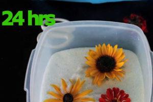 7 روش دیگر خشک کردن گل