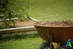 7 افزایش باردهی سبزیجات