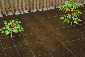 5 ساخت باغچه سبزیجات در خانه