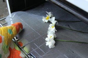 5 خشک کردن گل ها