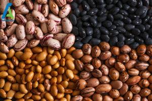 8 ده مورد مواد غذایی فاسد نشدنی