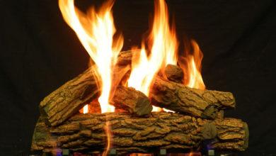 Photo of با کدام یک از چوب ها نمی توان آتش درست کرد؟