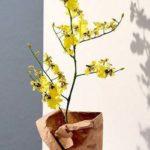 8 راهنمای انتخاب و خرید گل های مصنوعی