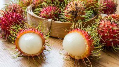 Photo of راهنمای خرید و نحوه استفاده از میوه رامبوتان