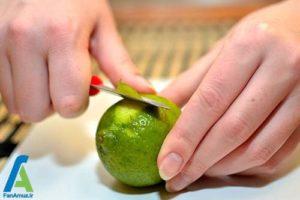 6 تهیه و استفاده از عصاره لیمو در غذا