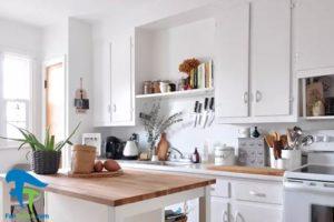 2 گیاهان مناسب برای پرورش در آشپزخانه