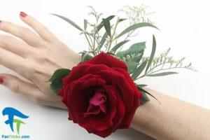 5 نحوه وصل کردن گل سینه داماد