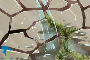 5 استفاده از هیدروژن پراکسید برای گل و گیاه