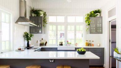 Photo of معرفی گل و گیاهان مناسب برای پرورش در فضای آشپزخانه