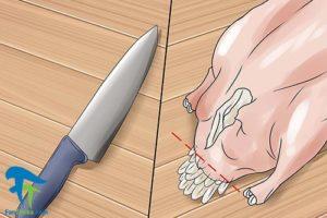 6 نحوه صحیح جدا کردن پوست و پر اردک