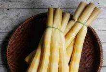 Photo of خواص و فواید بامبو و طرز تهیه خوراک بامبو