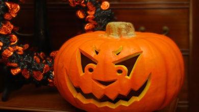 Photo of چگونه از کدو هالووین نگهداری کنیم تا کپک نزند؟