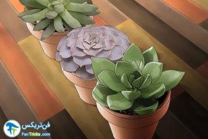 2 گیاهانی که به مراقبت کمی احتیاج دارند