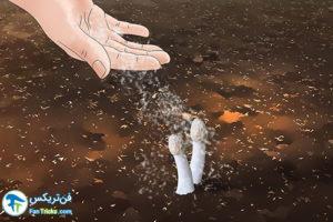 4 از بین بردن قارچ سمی از باغچه