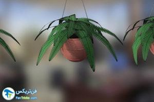 8 گیاهانی که به مراقبت کمی احتیاج دارند