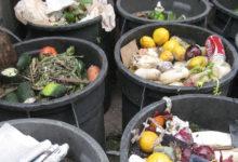 Photo of چگونه از ورود کرم و حشره در سطل زباله جلوگیری کنیم؟