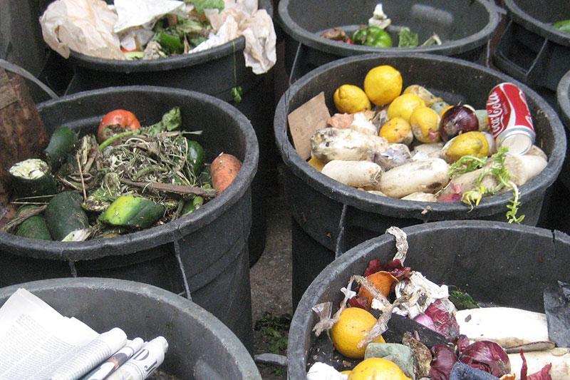 4 جلوگیری از ورود حشرات به سطل زباله