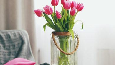 Photo of چگونه شاخه گل های لاله را برای طولانی مدت تازه نگه داریم؟