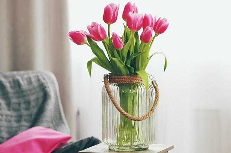 5 نگهداری طولانی مدت شاخه گل لاله
