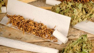 Photo of چگونه سیگار گیاهی طبیعی و بی ضرر درست کنیم؟