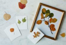 Photo of نحوه نگهداری طولانی مدت برگ گیاهان با استفاده از کاغذ روغنی و اتو