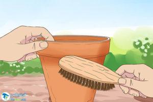 1 ضدعفونی و از بین بردن شوره گلدان سفالی
