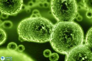 1 میکروبیوم پوست چیست