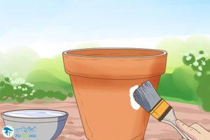 3 ضدعفونی و از بین بردن شوره گلدان سفالی