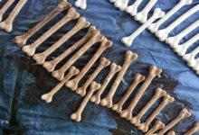 Photo of نحوه رنگ آمیزی استخوان جهت ساخت آثار و کارهای هنری