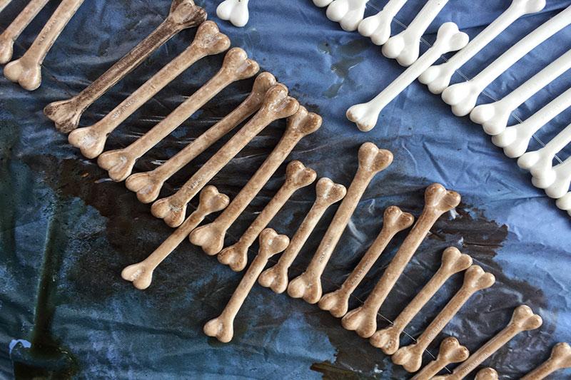 4 آموزش رنگ کردن استخوان