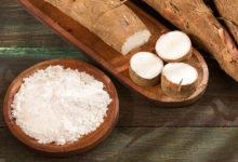 Photo of چگونه از آرد کاساوا یا مانیوک استفاده کنیم؟