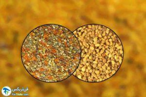 1 درمان آلرژی با گرده زنبور عسل