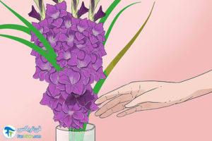 3 تازه نگه داشتن طولانی مدت گل گلایول