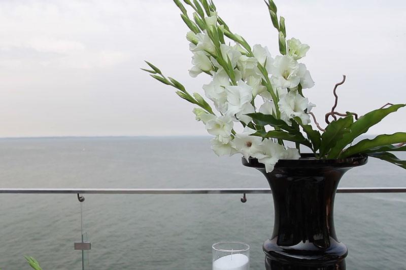 4 تازه نگه داشتن طولانی مدت گل گلایول