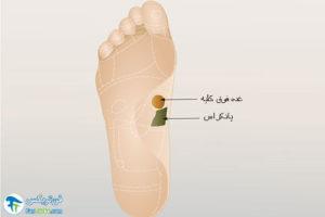 4 درمان فیبرومیالژیا با رفلکسولوژی پا