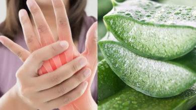 Photo of نحوه استفاده از آلوورا برای درمان و تسکین درد آرتریت روماتوئید RA