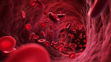 Photo of روش های خانگی و طبیعی کاهش سطح گلوبولین خون