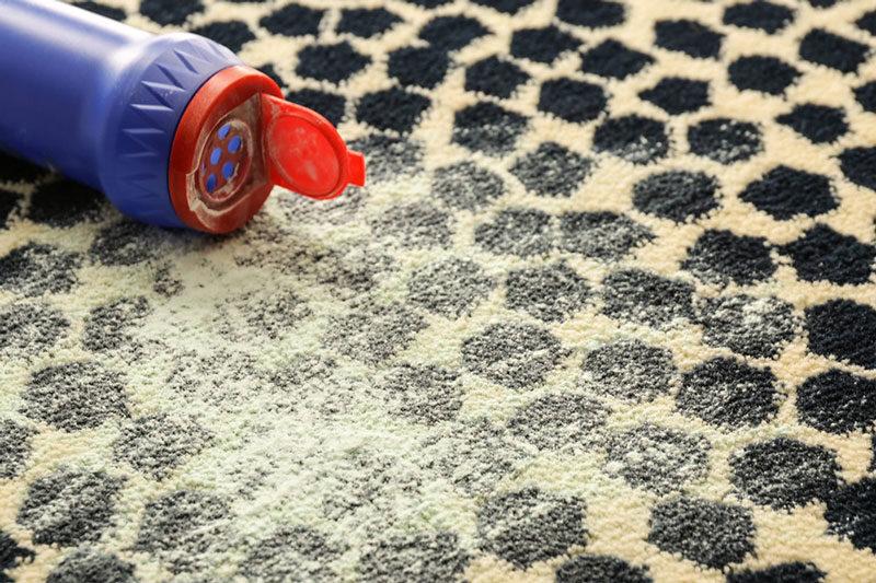4 مبارزه با حشرات فرش با خاک دیاتومه