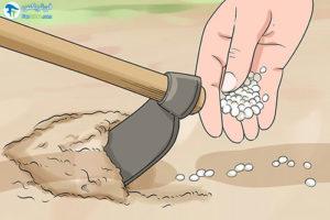 2 افزایش کیفیت خاک با استفاده از کود اوره