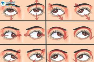 2 درمان اختلالات بینایی پس از سکته مغزی