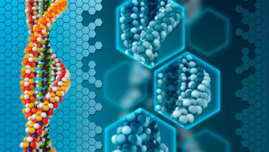 Photo of آیا علاقه و کشش افراد به چیزها، به ژنتیک مربوط می شود؟