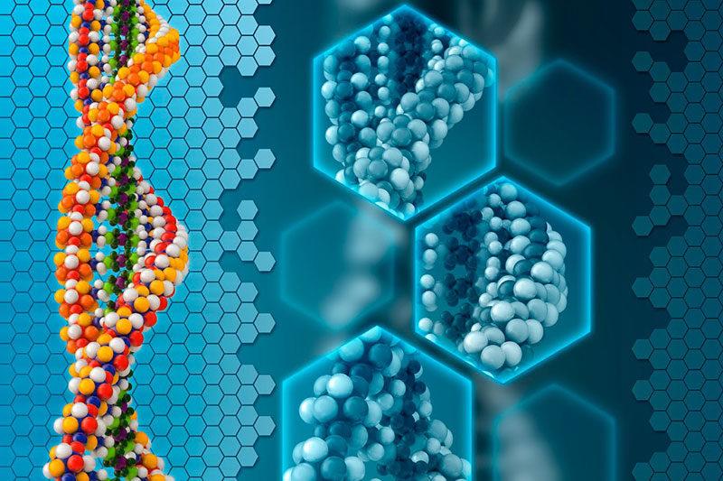 2 کشش و علاقه ژنتیکی افراد